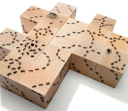 Antics Ant Blocks