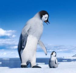 Папа и малыш. Кадр из мультфильма Happy feet 2